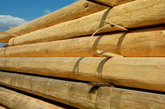 Drewno do budowy domu Texture, Wood, Surface Finish, Woodwind Instrument, Timber Wood, Trees, Pattern