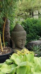 Buddha Büste aus Bali  #stone #garden #outdoor #bust