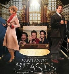 My favorite fantastic beast is that little one on the left Fantastic Beasts Movie, Fantastic Beasts And Where, Eddie Redmayne, Harry Potter World, Harry Potter Memes, Credence Barebone, Scorpius And Rose, Lord Voldemort, Welcome To Hogwarts