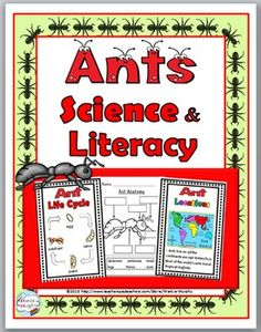 Ants Science and Literacy