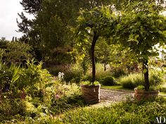 The Magical Garden Landscapes of Jinny Blom Photos | Architectural Digest