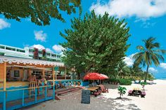 Barbados: Chillaa Coconut Court Beach -hotellin rantabaarissa ja siemaile viilentäviä virvokkeita.   http://www.finnmatkat.fi/Lomakohde/Barbados/Barbadoksen-etelarannikko/Coconut-Court-Beach/?season=talvi-13-14
