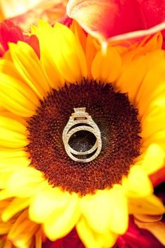 What a stunning backdrop for the rings! Shop beautiful, bright sunflowers and other popular wedding flowers year-round at GrowersBox.com!