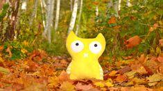 Lina ist eine introvertierte Plüschtier Eule aus Dresden. Sie reist auch sehr gern. Hier siehst Du ein Bild vom letzten Jahr in einer bunten Herbststimmung im Wald.