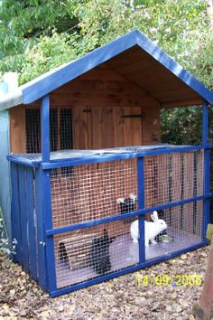 nice roomy looking hutch/wendy house. liking the covered outdoor protection too  Rabbits United Forum housing by rabswood outdoor rabbit house