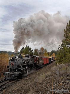 Sumpter Valley's #19, a 3' gauge Mikado type locomotive, smokes it up for the  photographers, as she hauls a freight train past our location.