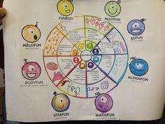 Ensemble, les élèves complètent cette roue pour expliquer chaque intelligence.