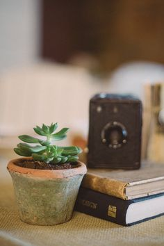 Old cameras, books, and weathered flower pots as vintage wedding decor.