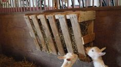 Homemade Wood Pallet Livestock Hay Feeder - http://www.homesteadingfreedom.com/homemade-wood-pallet-livestock-hay-feeder/