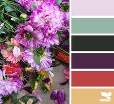 flora hues 1.30.15