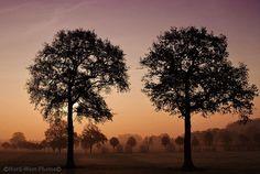 Bild 6: Colours of Natur ( Münsterland )
