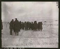 German PWs, Bastogne, 31 December 1944
