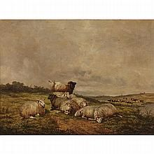 Thomas Sidney Cooper Paintings for Sale | Thomas Sidney Cooper Art Value Price Guide