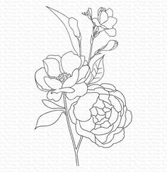 Fresh-Cut Flowers – MFT Stamps Line Art Flowers, Flower Line Drawings, Line Flower, Flower Sketches, Outline Drawings, Cut Flowers, Drawing Sketches, Flower Art, Art Drawings