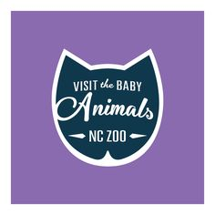 The North Carolina Zoo is the place for face-to-face encounters with more than 1,600 creatures in acres of natural habitats. Check out the cougar kittens and baby otter, while the enhanced KidZone will thrill young visitors. #NCbucketlist