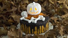 Cake Urchin – All Cakes Cookies And Creme Cupcakes, Mini Cookies, Cake Pops 4 Ways, Halloween Cookies, Halloween Party, Cake Images, Cake Toppings, Seafood Recipes, Cake Decorating