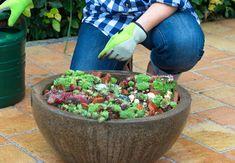 So machst du deinen Garten Fit für den Frühling! Pflanzen ein- und umtopfen in 5 Schritten.