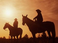 Basic Rules About Horseback Riding For Beginners - FashionActivation Quarter Horses For Sale, Dude Ranch Vacations, Trail Riding, Equestrian Style, Show Horses, Horseback Riding, Cowboys, Riding Helmets, Sunset