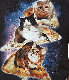 Tumblr Mghe2j8GYo1qzta1ao1 400 345x403 Pixels Silly Cats Funny Pizza Shirt