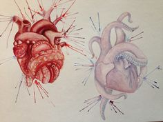 Watercolor heart with tentacles. Octopus hearts. Tony Amato