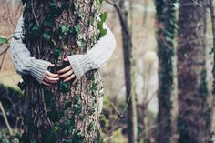 To really experience a tree, hug it (for 15 minutes and feel the flow of life energy)