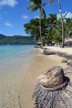 La très belle plage de la Pointe Marin à Sainte-Anne. Sud de la Martinique. Antilles françaises.