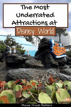 The Most Underrated Attractions at Each Disney World Park Disney On A Budget, Disney Vacation Planning, Disney World Planning, Disney Vacations, Disney World Secrets, Disney World Tips And Tricks, Disney Tips, Disney World Florida, Disney World Parks