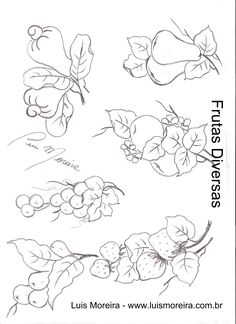frutas diversas.jpg (1700×2338)