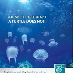 Plastic bags in the ocean are killing thousands of sea turtles.
