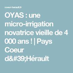 OYAS : une micro-irrigation novatrice vieille de 4 000 ans !   Pays Coeur d'Hérault