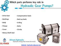 Which parts performs key role in hydraulic gear pumps?