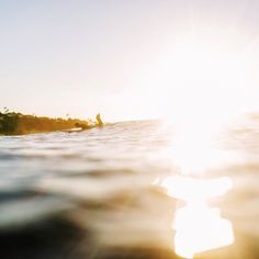 """""""You can't stop the waves, but you can learn to surf."""" – John Kabat-Zinn"""