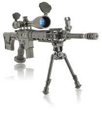 https://www.google.com/search?q=custom sniper rifle