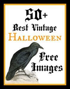Best Free Vintage Halloween Images! Great for all of your Halloween Craft and DIY Projects! #Halloween