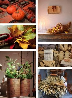 Farm to Table Mood Board