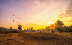 The sunrise over Angkor Wat was one of my Most Beautiful Sunrises! Beautiful Sunrise, Most Beautiful, Angkor Wat, Sunrises, Celestial, Spaces, Outdoor, Breaking Dawn, Outdoors
