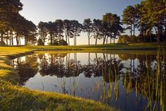 Farm Neck Golf Club in Martha's Vineyard  rests on a peninsula of rolling farmland on the eastern side of the Island, overlooking Nantucket Sound.  Farm Neck is open to the public for golf. President Obama has played golf here 4 times during his presidency. It costs $150 to play a round at this luscious golf spot. Us Travel Destinations, Obama Administration, What To Pack, Nantucket, Where To Go, Touring, Martha's Vineyard, Traveling By Yourself, Golf Courses