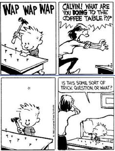 Calvin and Hobbes - luckily I have girls, worst thing they ever did was paint a laptop with fingernail polish. It's obsolete now anyway. :)