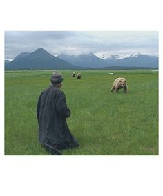 Grizzly Man by Werner Herzog