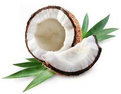 kokosnuss exotische frucht exotische früchte