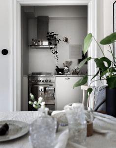 Planten In De Keuken: Decoreer De Afzuigkap