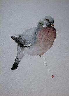 Karl Martens, WOOD PIGEON   The Wykeham Gallery