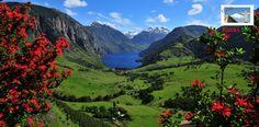 En Coyhaique es posible realizar deportes extremos donde abundan los bosques perennifolio ¿No sabes cuáles son? Averígualo acá: http://www.rutas365.com/es-chile-coyhaique-atractivos-turisticos/