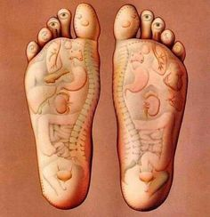 Benefits of foot reflexology. Foot reflexology is a type of pressure massage on the feet, especially on the soles, to indirectly stimulate the vital organs and glands of the body, making them healthy. Thai Massage, Foot Massage, Shiatsu, Reflexology Massage, Reflexology Points, Acupressure Points, Foot Reflexology Chart, Acupressure Chart, Acupressure Therapy