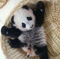 Need a hug...