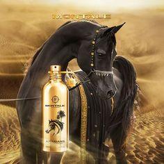 First Perfume, Beautiful Perfume, Beauty Skin, Hair Cuts, Fragrance, The Incredibles, Skin Care, Horses, Racing