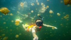 Adventure Tips: 6 GoPro Shots for Beginners Medusa, Cool Pictures Of Nature, Pro Shot, Gopro Photography, Adventure Photography, Photography Ideas, Best Selfies, Camera Shop, Gopro Camera