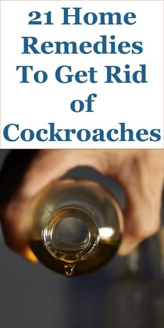 Cockroaches, as pests, can survive serious hardship and adversity. The can even survive a nuclear explosion. Finding cockroaches in your kitchen, apartment or in your toilet can be quite unnerving. You should also realize that cockroaches hardly move around solo. So, chances are quite high that you have a cockroach infestation if you can see a couple of them around. Before you rush out to call a pest extermination professional, there are some cockroach home remedies that you may want to use…
