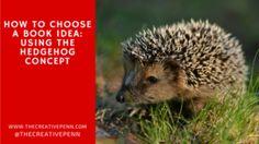 The Hedgehog Concept
