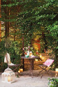 Un jardín con muchas plantas de día y de nocha